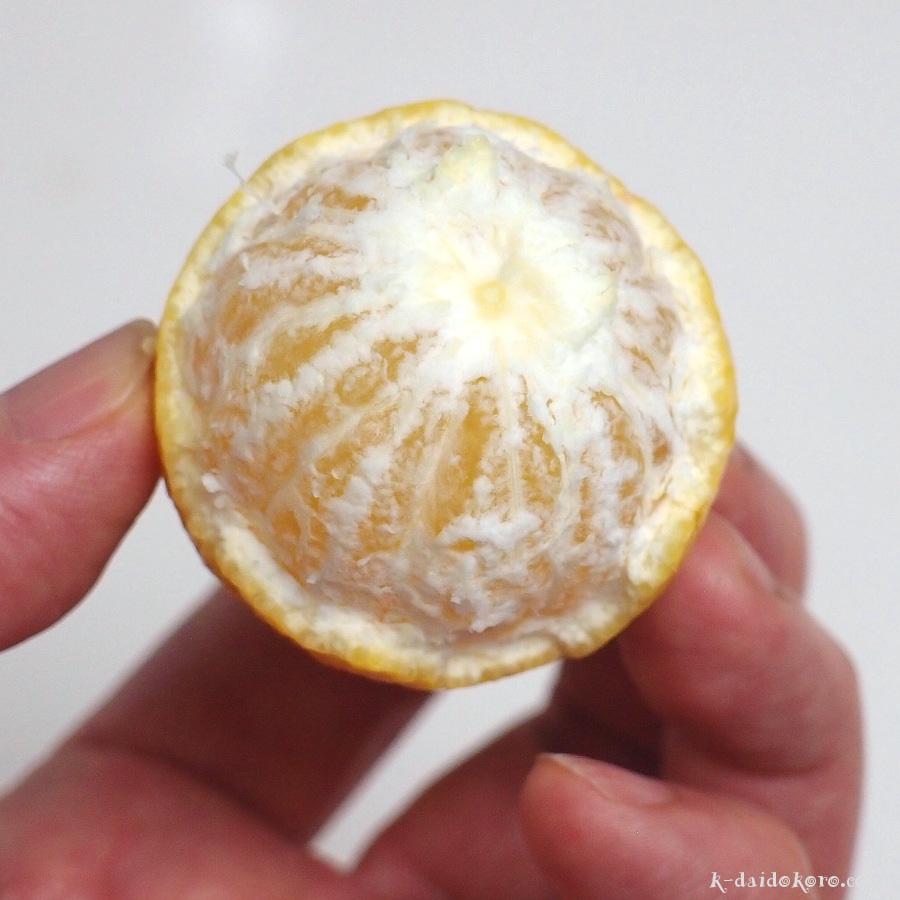 黄金柑の皮の剥き方 3